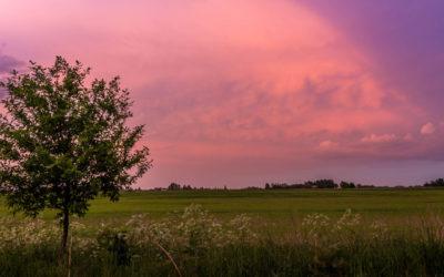Heading North: Das Baltikum