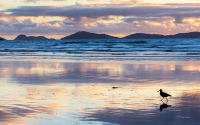 Australia – Hottest Xmas ever